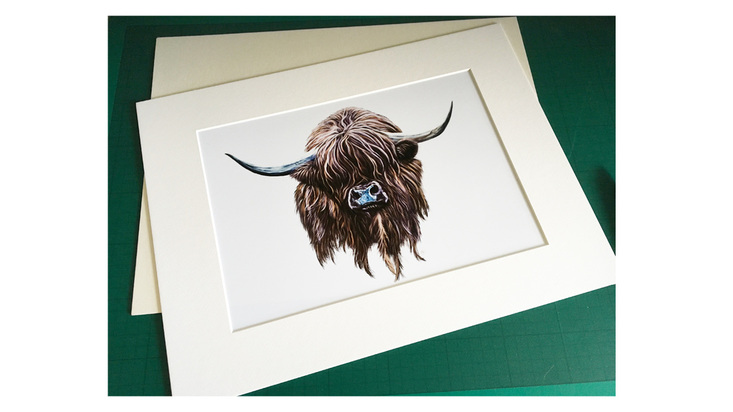 A photo of a highland cow print being framed.