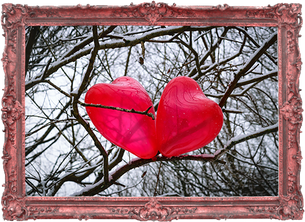 Photograph of two heart balloons nestled in a branch