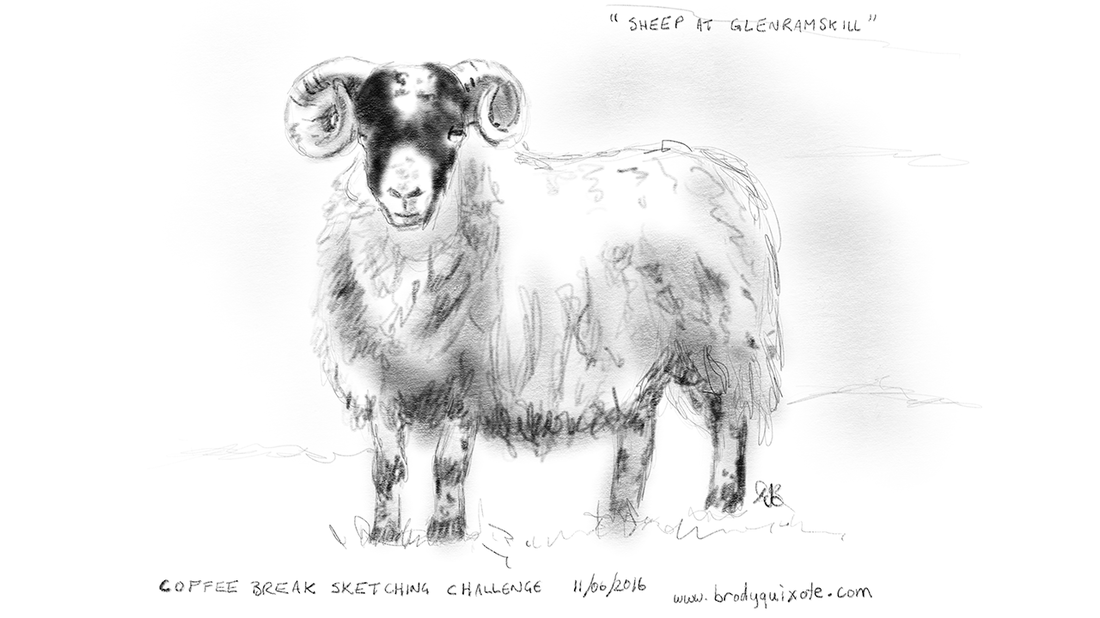 Drawing of a Sheep from Glenramskill, Campbeltown